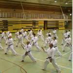 karate2011a-jpg_1352530555